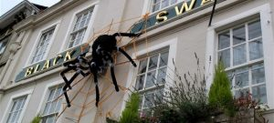 Big Spider Devizes